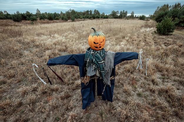 Een enge vogelverschrikker met een halloween-pompoenhoofd op een gebied in bewolkt weer.