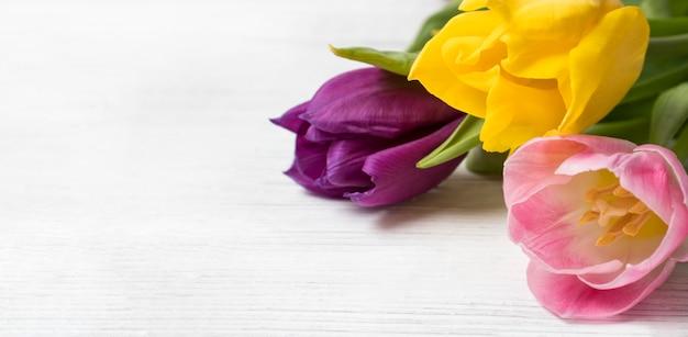 Een feestelijke bloemenbanner met een plek voor tekst. een boeket van felgekleurde veelkleurige gele, roze en paarse tulpen op een witte houten achtergrond. kaart. lente achtergrond