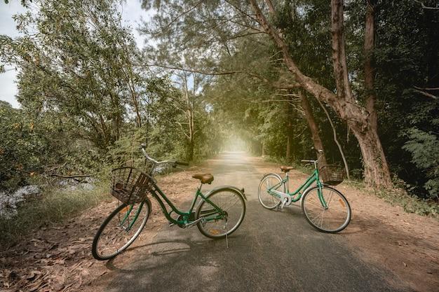 Een fiets op weg met zonlicht en groene boom in park buiten.