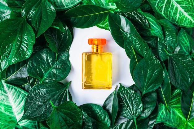 Een fles parfum en natuurlijke parfum op een groene achtergrond.