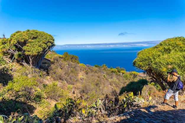 Een fotograaf fotografeert op het las tricias-pad in de stad garafia in het noorden van het eiland la palma, canarische eilanden