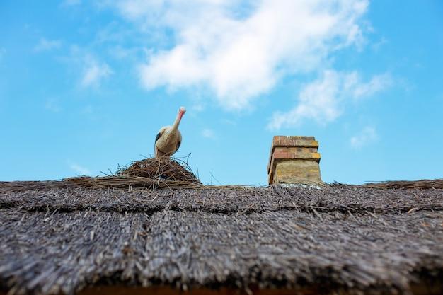 Een fragment van een rieten dak met een keramische sculptuur van een ooievaar in een nest en een schoorsteen tegen