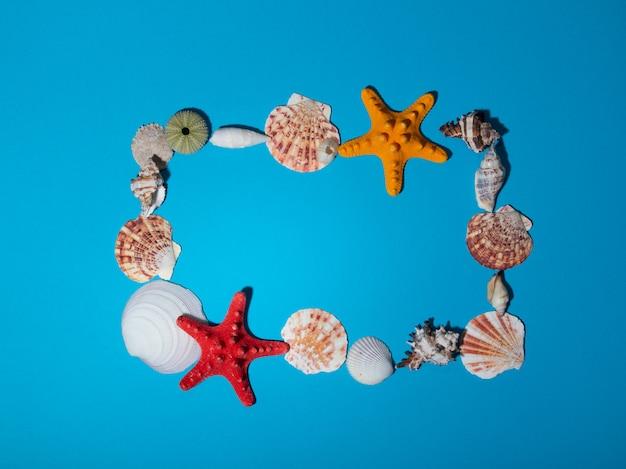 Een frame van zeeschelpen op een blauwe achtergrond