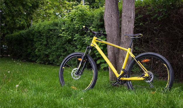 Een gele mountainbike staat bij een boom in het park. het concept van fietsen en een actieve levensstijl.