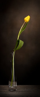 Een gele tulp in een glazen vaas op bruine achtergrond