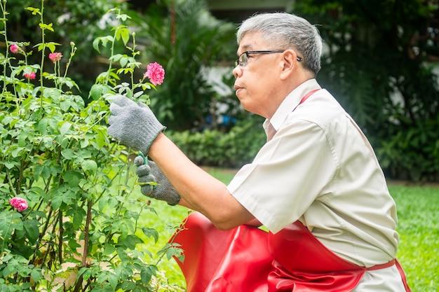 Een gelukkige en glimlachende aziatische oude oudere man snoeit takjes en bloemen voor een hobby