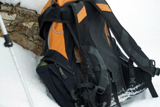 Een gewone woelmuis die op een rugzak klom die in de sneeuw was gegooid