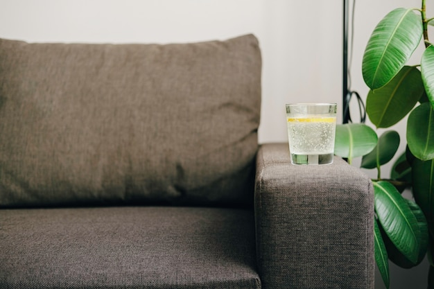 Een glas water met citroen. minimalistisch ontwerp. sofa, ficus en zonlicht