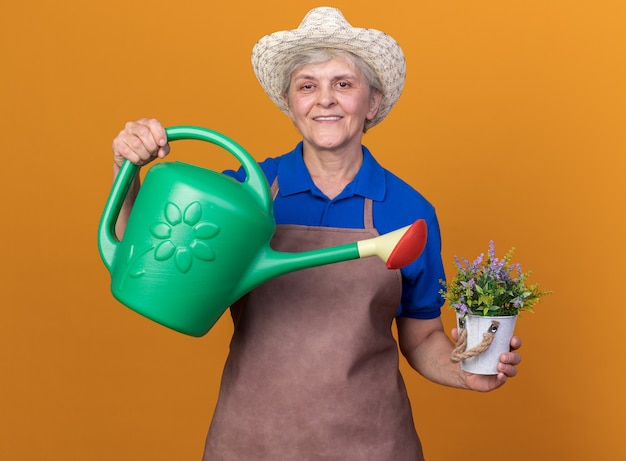 Een glimlachende oudere vrouwelijke tuinman die een tuinhoed draagt, houdt een gieter en een bloempot geïsoleerd op een oranje muur met kopieerruimte
