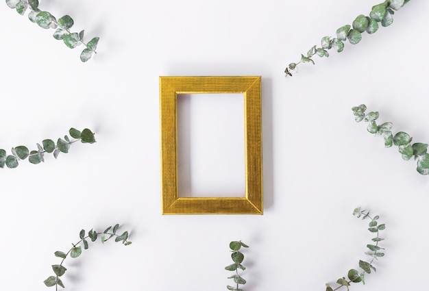 Een gouden frame voor kopie ruimte en groene bladeren van eucalyptus rond op een wit