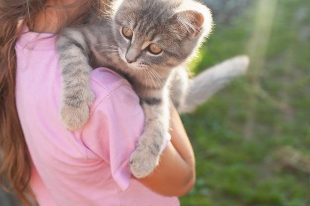 Een grijze kat ligt in de zomer op de schouder van het meisje. het meisje staat op een halve draai in de ondergaande zon.