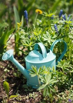 Een groene gieter staat in de tuin tussen de bloemen