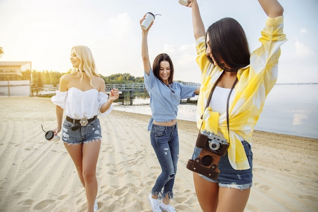 Een groep jonge aantrekkelijke meisjes die van een strandpartij genieten.