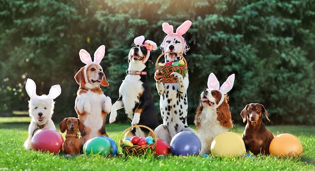 Een groep van verschillende honden met pasen gekleurde eieren op het gazon