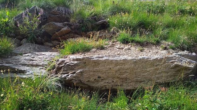 Een groot stuk steen ligt in het gras