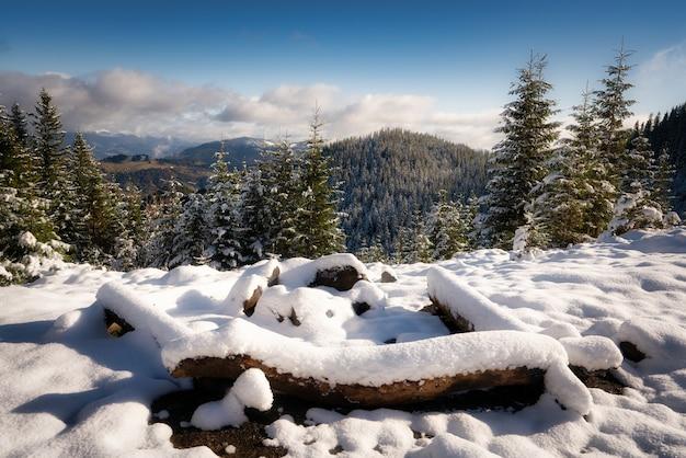 Een grote met sneeuw bedekte kampvuurplaats om te wandelen in de karpaten in de stralende koude zon