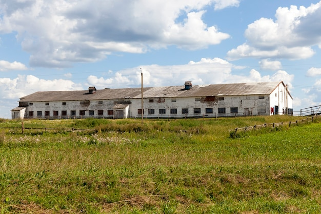 Een grote oude verlaten boerderij, werd gebruikt als een koeienstal, zomerlandschap
