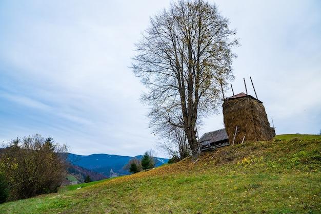 Een grote stapel droog hooi staat bij een kleine boom zonder bladeren tegen een prachtige vallei, met herfstbossen en groene weiden en een klein dorpje.