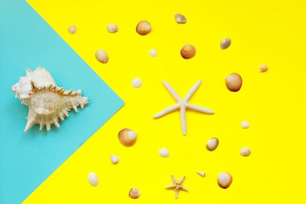 Een grote zeeschelp op blauw en veel kleine zeeschelpen