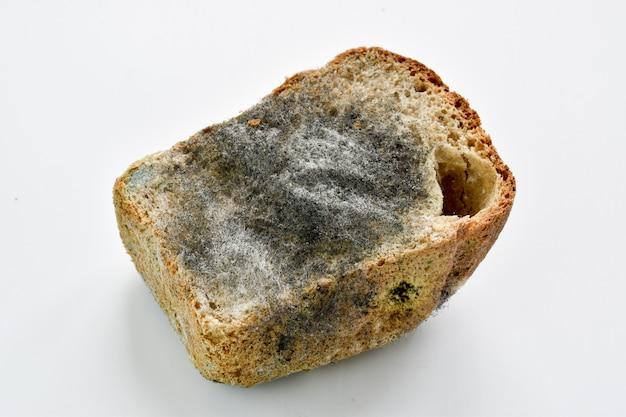 Een half zwart brood bedekt met schimmel