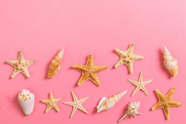 Een heleboel schelpen en starfishon op roze met kopie ruimte