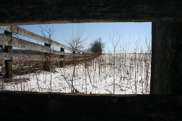 Een houten hek strekt zich uit over kale besneeuwde landbouwgrond bezaaid met dode stengels