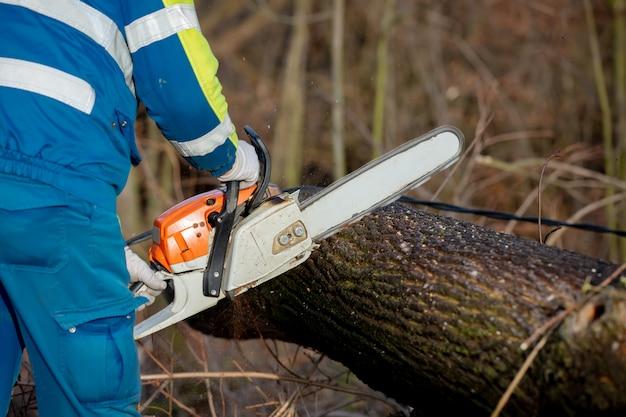 Een hulpverlener zag een boom die op een hoogspanningslijn viel