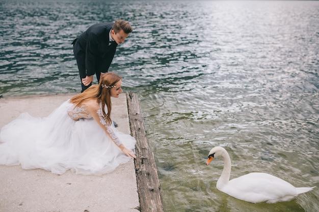 Een huwelijkspaar stellen dichtbij zwanen op het achtergrondmeer en de bergen in oostenrijk