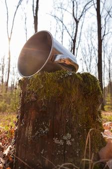 Een ijzeren beker ligt in het bos op een boomstronk