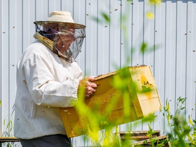 Een imker draagt een bijenkorf met honingraten inspectie van bijen in de bijenstal