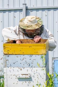 Een imker haalt een frame met honingraten uit de kastinspectie van bijen