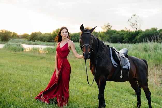Een jong mooi meisje in een rode jurk vormt bij zonsondergang op een boerderij met een volbloedhengst. liefde en zorg voor dieren.