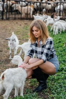 Een jong mooi meisje poseert op een boerderij met geiten en andere dieren. landbouw, veeteelt.