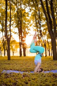 Een jong sportmeisje beoefent yoga in een stil groen bos in de herfst bij zonsondergang, in een yogaasana pose. meditatie en eenheid met de natuur