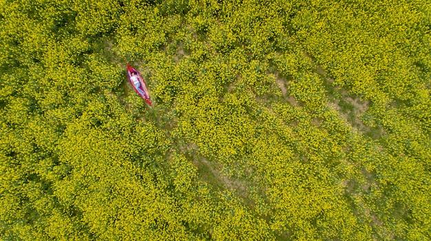 Een jonge en mooie brunette in zonnebril ligt in een koolzaad veld