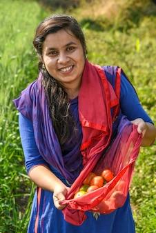 Een jonge indiase vrouw boer verse tomaten plukken in de biologische boerderij veld.