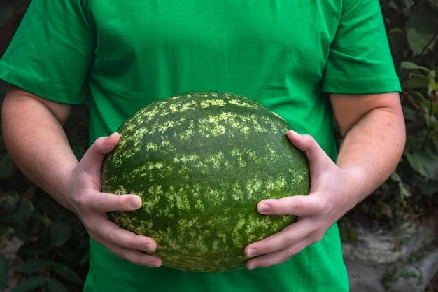 Een jonge man in een groen t-shirt houdt een grote ronde groene watermeloen vast.