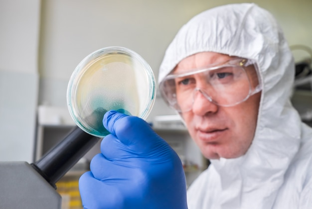 Een jonge mannelijke laboratoriumtechnicus controleert een petrischaal met agar en bacteriën erop. opening van een onderzoeker in het laboratorium. biologisch onderzoek