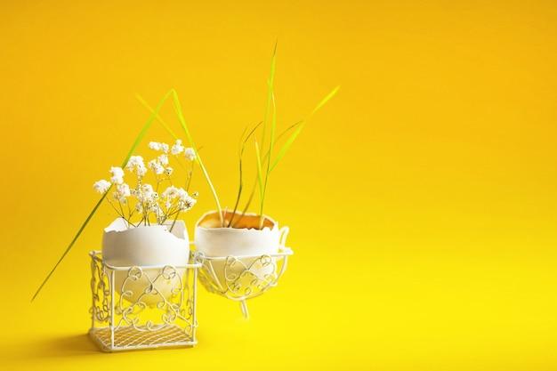 Een jonge tarwekiem in een eierschaal in een opengewerkte standaard op een gele achtergrond. symbool van nieuw leven