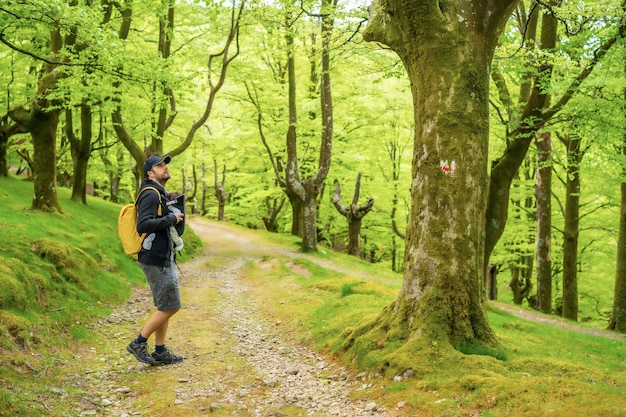 Een jonge vader loopt met het pasgeboren kind in de rugzak over een pad in het bos op weg naar de picknick met het gezin