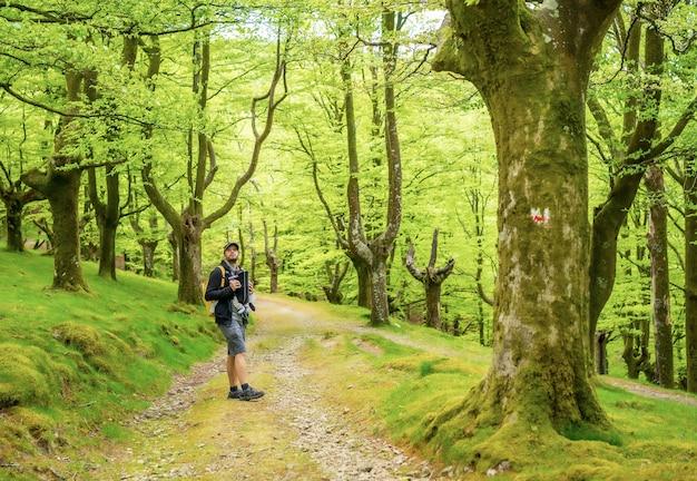 Een jonge vader met een gele rugzak die met het pasgeboren kind in de rugzak op een pad in het bos op weg naar de picknick met het gezin loopt