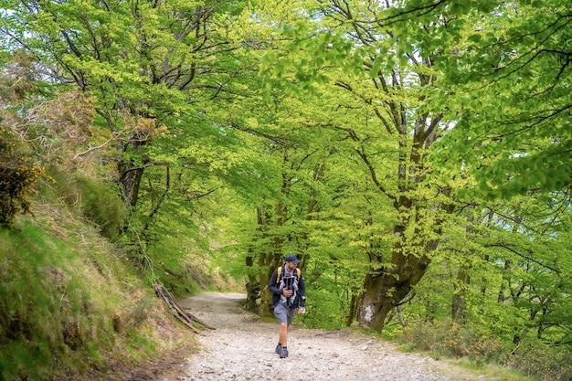 Een jonge vader met het pasgeboren kind in de rugzak op een pad in het bos op weg naar de picknick met het gezin