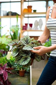 Een jonge volwassen vrouw die in een tuinierende winkel werkt en bloemen draagt