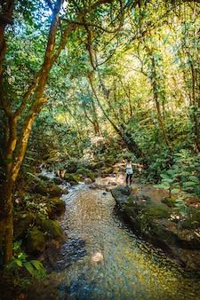 Een jonge vrouw in het rio azul meambar national park (panacam) in yojoa. honduras