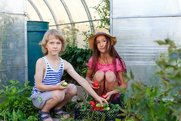 Een jongen en een meisje komen uit een kas met een mandje met verse groenten