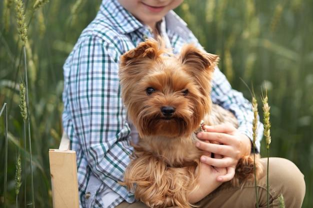 Een jongen houdt een puppy van yorkshire terrier in de natuur