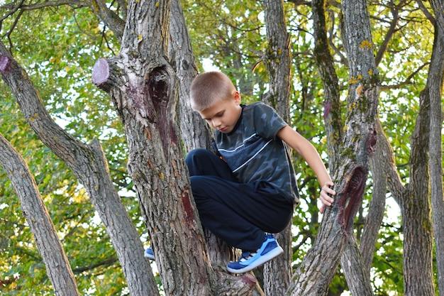 Een jongen klimt in bomen. vrolijke gelukkige vrije jeugd in de frisse lucht.