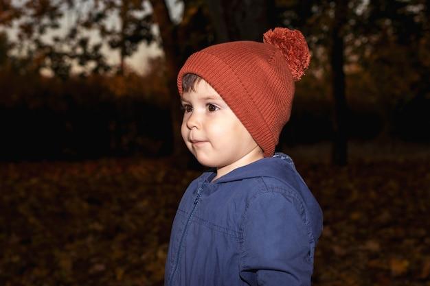 Een jongen van 3 jaar met een oranje hoed en een blauwe jas loopt in het herfstbos.