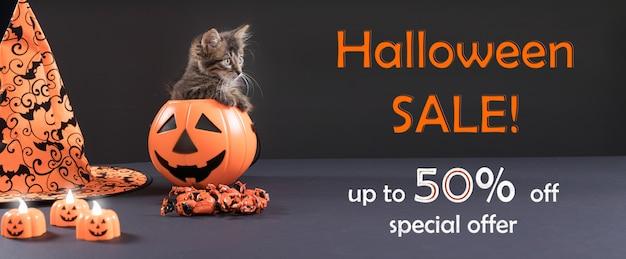 Een kat zit in een emmer op een zwarte met tekst halloween sale tot vijftig korting op speciale aanbieding.