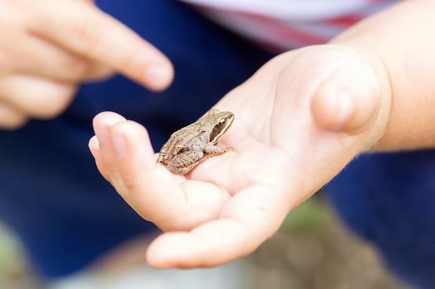 Een kind heeft een kleine kikker in zijn handen